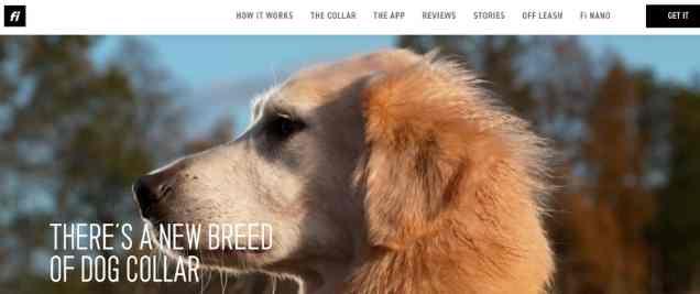 dog affiliate program
